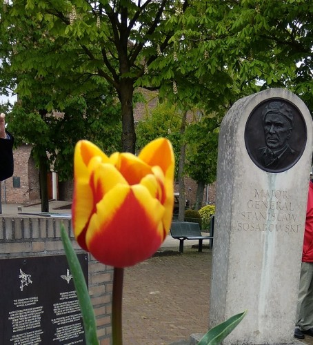 Pomnik-gen.-Sosabowskiego-i-Tulipan-Sosabowski_Driel-8-5-2017-fot.-E.-Grochowska_Polonia.NL_2